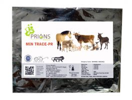 Animal Health Enzymes Probiotics