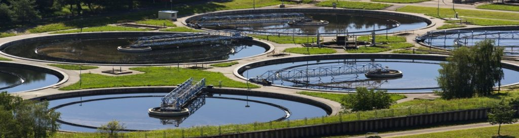 GMP Certified Enzymes & Microbial Cultures for Effluent Treatment`