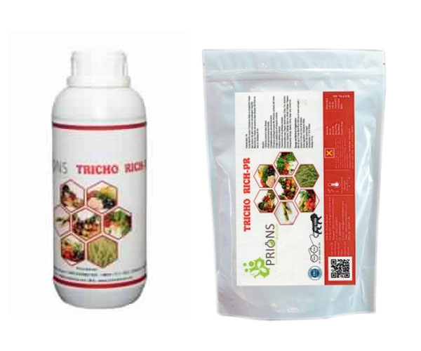 Trichoderma Viride an Antagonistic Fungus Plant Roots Protector